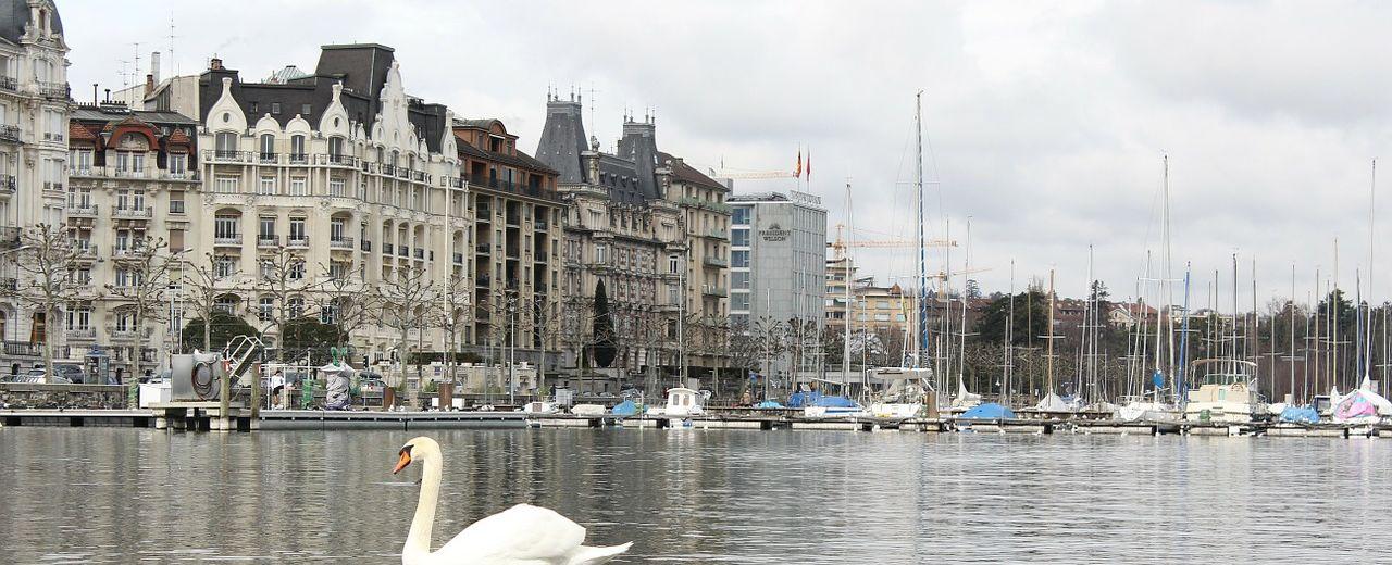 Appartement feng shui Genève